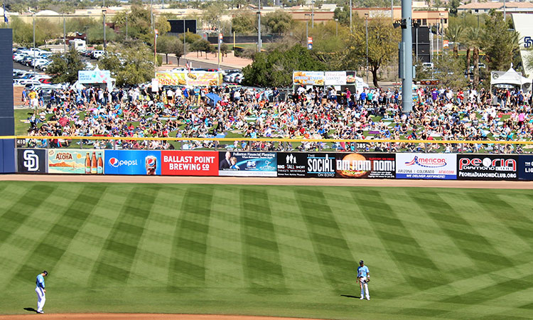 Packed stands during Spring Training